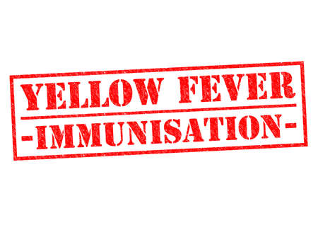 yellow fever: YELLOW FEVER IMMUNISATION red Rubber Stamp over a white background. Stock Photo