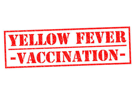 yellow fever: YELLOW FEVER VACCINATION red Rubber Stamp over a white background.