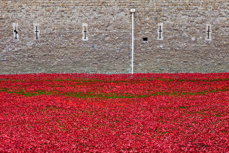The ceramic Poppies at the Tower of London photo