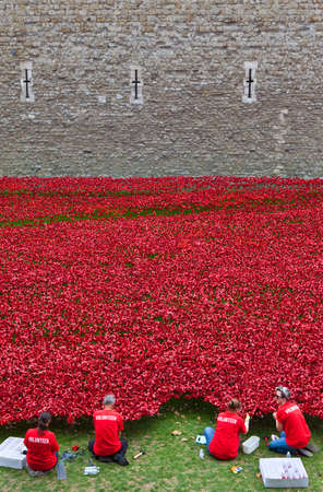 Volunteers helping set up the Ceramic Poppy Installation at the Tower of London Stock Photo