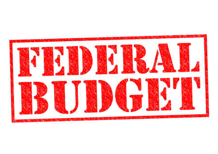 fiscal: FEDERAL BUDGET red Rubber Stamp over a white background. Stock Photo