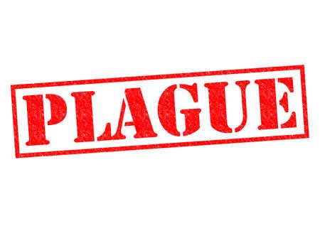 plaga: PLAGA sello de goma roja sobre un fondo blanco.