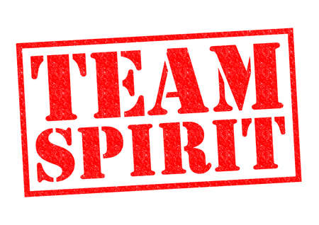 team spirit: TEAM SPIRIT red Rubber Stamp over a white background.