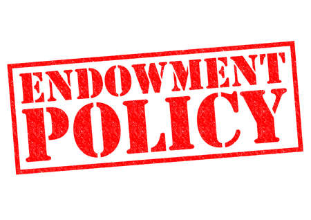 endowment: ENDOWMENT POLICY red Rubber Stamp over a white background.