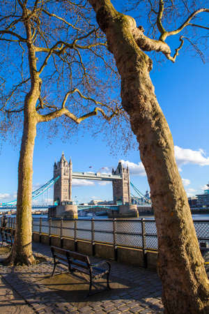 A beautiful view of Tower Bridge through the trees along the Thames Path in London. photo