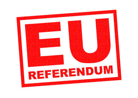 mandate: EU REFERENDUM red Rubber Stamp over a white background.