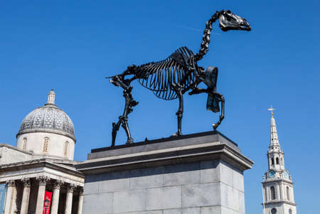 "plinth: A horse skeleton sculpture on the fourth plinth in Trafalgar Square in London.  The installation is by German Artist Hans Haacke is entitled ""Gift Horse"".  The National Gallery and the spire of St. Martin in the Fields church can be seen in the distan"