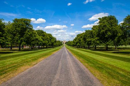 berkshire: Looking towards Windsor Castle from The Long Walk in Berkshire, England.