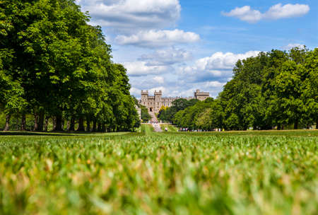 berkshire: View of Windsor Castle from The Long Walk in Berkshire, England.