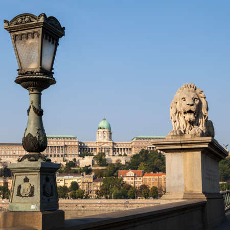 the chain bridge: A view of Buda Castle from the Chain Bridge in Budapest, Hungary.