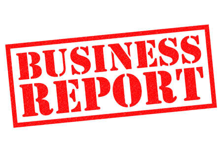 budgetary: BUSINESS REPORT red Rubber Stamp over a white background.