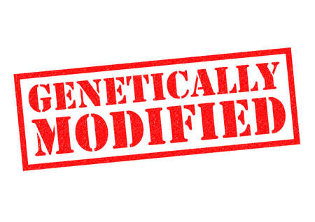gm: GENETICALLY MODIFIED red Rubber Stamp over a white background.