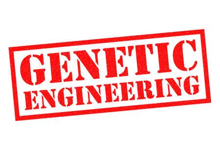 gm: GENETIC ENGINEERING red Rubber Stamp over a white background. Stock Photo
