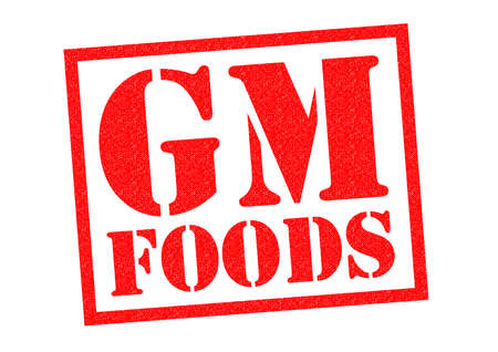 gm: GM FOODS red Rubber Stamp over a white background.