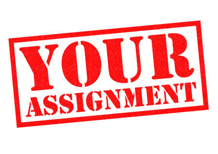 assignment: YOUR ASSIGNMENT red Rubber Stamp over a white background.