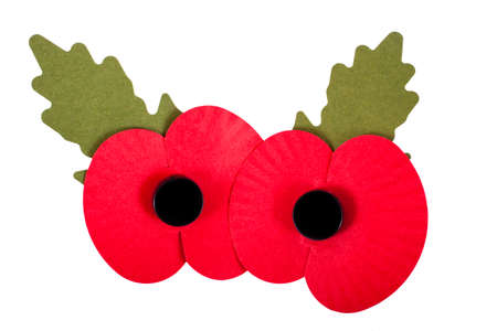 armistice: A close-up of artificial Poppies used to commemorate Remembrance Day.