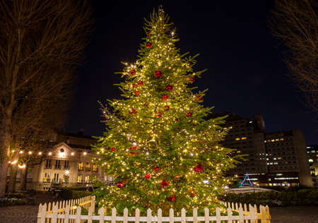 katherine: View of a beautiful Christmas Tree at St. Katherine Docks in London. Stock Photo
