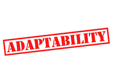 revised: ADAPTABILITY red Rubber Stamp over a white background. Stock Photo