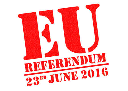 referendum: EU REFERENDUM red Rubber Stamp over a white background.