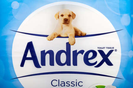 LONDON, UK - JUNE 16TH 2016: A close-up of the logo for Andrex Toilet Tissues, on 16th June 2016. Andrex is owned by the American company Kimberly-Clark.