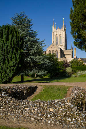 bury: A view of the remains of Bury St Edmunds Abbey and St Edmundsbury Cathedral in Bury St. Edmunds, Suffolk. Stock Photo