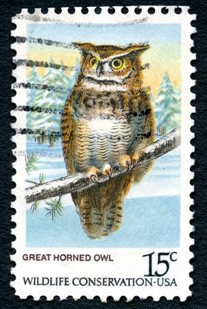 wildlife conservation: UNITED STATES OF AMERICA - CIRCA 1978: A used postage stamp form the USA depciting an illustration of the Great Horned Owl and celebrating Wildlife Conservation, circa 1978.
