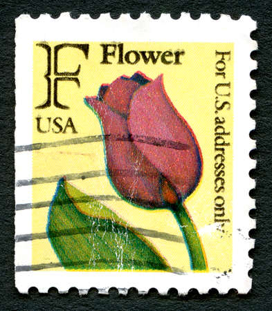 addresses: UNITED STATES OF AMERICA - CIRCA 1991: A used postage stamp from the USA, with an illustration of a red Tulip, circa 1991.