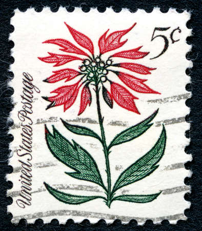postmarked: UNITED STATES OF AMERICA - CIRCA 1960s: A used postage stamp from the USA, depicting an illustration of a red flower, circa 1960s. Editorial