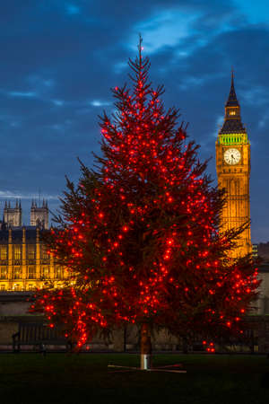 A view of a beautiful illuminated Christmas tree with the Elizabeth Tower of the Houses of Parliament and Westminster Abbey in the background, London.