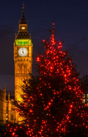 A view of a beautiful illuminated Christmas tree with the Elizabeth Tower of the Houses of Parliament in the background, London.