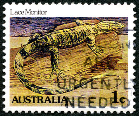 lizzard: AUSTRALIA - CIRCA 1981: A used postage stamp from Australia, depicting an illustration of a Lace Monitor Lizard, circa 1981.