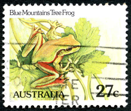 blue mountains tree frog: AUSTRALIA - CIRCA 1981: A used postage stamp from Australia, depicting an illustration of a Blue Mountain Tree Frog, circa 1981. Editorial