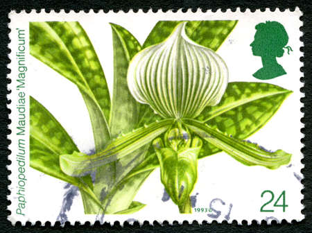 UNITED KINGDOM - CIRCA 1993: A used postage stamp from the UK, depicting an illustration of a Paphiopedilum Maudiae flower, circa 1993. Editorial