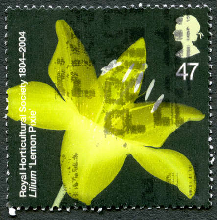 GREAT BRITAIN - CIRCA 2004: A used postage stamp from the UK, depicting an image of a Lilium 'Lemon Pixie' flower, circa 2004.