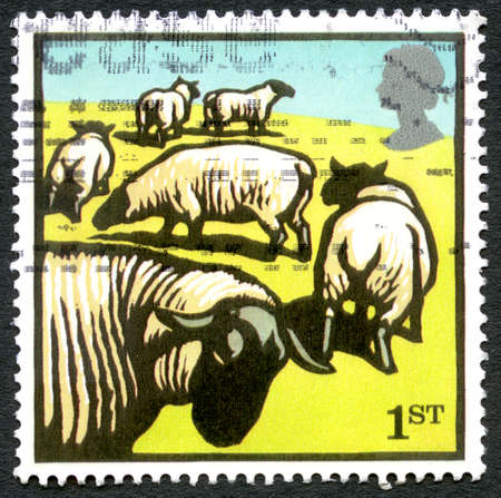 GREAT BRITAIN - CIRCA 2005: A used postage stamp from the UK, depicting an illustration of a flock of Sheep, circa 2005.