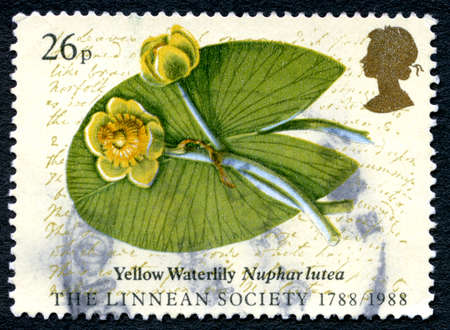 GREAT BRITAIN - CIRCA 1988: A used postage stamp from the UK, depicting a Yellow Waterlily and commemorating the 200th Anniversary of the Linnean Society, circa 1988. Editorial