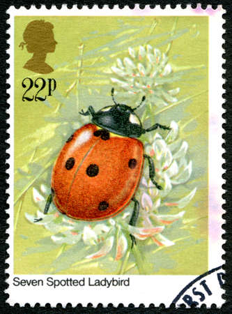 GREAT BRITAIN - CIRCA 1985: A used postage stamp from the UK, depicting an illustration of a Seven Spotted Ladybird, circa 1985. Editorial