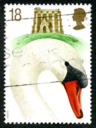 GREAT BRITAIN - CIRCA 1993: A used postage stamp from the UK, depicting an illustration of a Mute Swan Cob with St. Catherine's Chapel in Abbotsbury in the background, circa 1993. Editorial