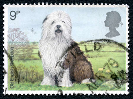 GREAT BRITAIN - CIRCA 1979: A used postage stamp from the UK, depicting an illustration of an Old English Sheepdog in the countryside, circa 1979.