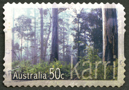 AUSTRALIA - CIRCA 2005: A used postage stamp from Australia, depicting an image of the Karri tree, also known as the Eucalyptus Diversicolor, circa 2005. Editorial