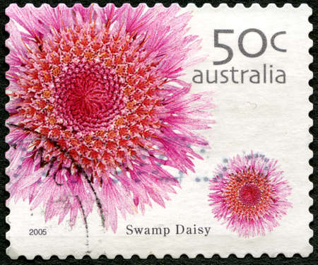 AUSTRALIA - CIRCA 2005: A used postage stamp from Australia, depicting an image of a Swamp Daisy flower, circa 2005. Editorial
