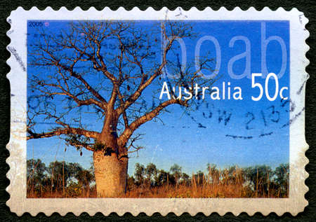 AUSTRALIA - CIRCA 2005: A used postage stamp from Australia, depicting an image of a Adansonia Gregorii, or also known as a Boab tree, circa 2005.