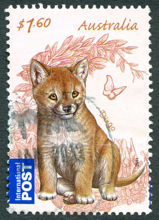 AUSTRALIA - CIRCA 2011: A used postage stamp from Australia, depicting an illustration of a Dingo, circa 2011. Editorial