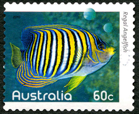 indopacific: AUSTRALIA - CIRCA 2010: A used postage stamp from Australia, depicting an image of a Regal Angelfish, circa 2010.