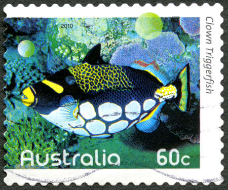 balistoides: AUSTRALIA - CIRCA 2010: A used postage stamp from Australia, depicting an image of a Clown Triggerfish, circa 2010.