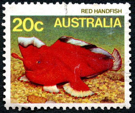 philately: AUSTRALIA - CIRCA 1985: A used postage stamp from Australia, depicting an illustration of a Red Handfish, circa 1985.