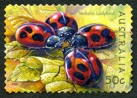 AUSTRALIA - CIRCA 2003: A used postage stamp from Australia, depicting an illustration of a Vedalia Ladybird, circa 2003.