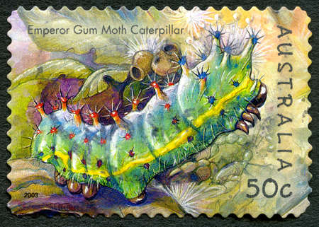 AUSTRALIA - CIRCA 2003: A used postage stamp from Australia, depicting an illustration of an Emperor Gum Moth Caterpillar, circa 2003.