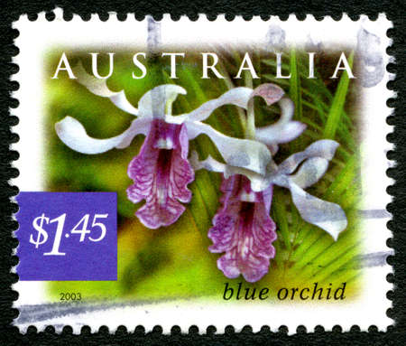 philately: AUSTRALIA - CIRCA 2003: A used postage stamp from Australia, depicting an image of a Blue Orchid, circa 2003.