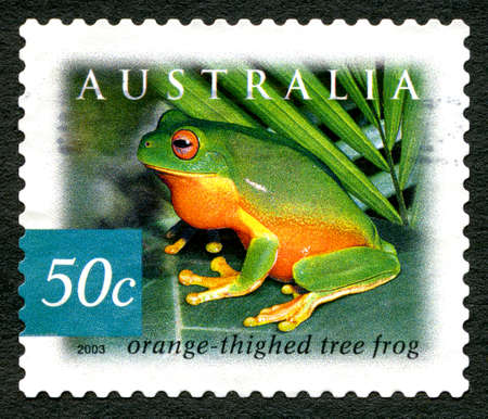 philately: AUSTRALIA - CIRCA 2003: A used postage stamp from Australia, depicting an image of an Orange Thighed Tree Frog, circa 2003. Editorial